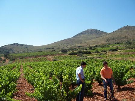 Our guide Inigo and Jose Luis - the Borsao's winemaker
